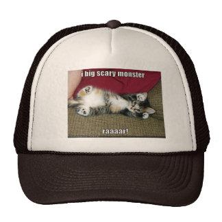 funny-pictures-cute-fierce-kitten cap