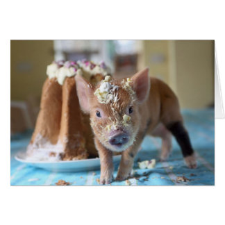 Funny pig and  the cake card