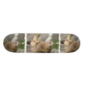 Funny Prairie Dogs Skateboard