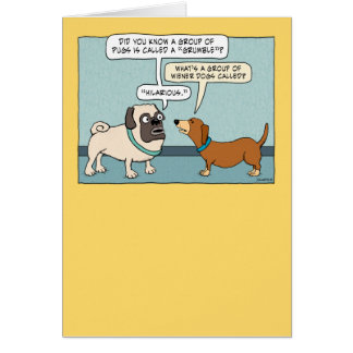 Funny Pug and Dachshund Birthday Card