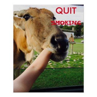 Funny quit smoking poster