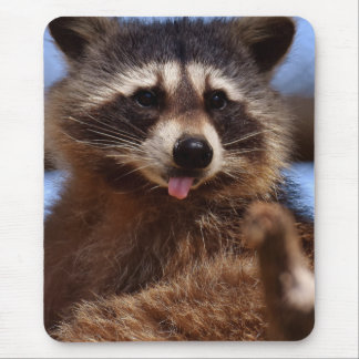 Funny Raccoon Sticking It's Tongue Out Mouse Pad
