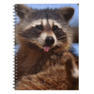 Funny Raccoon Sticking It's Tongue Out Notebook