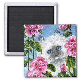 Funny Ragdoll Siamese Cat Roses Creationarts Magnet