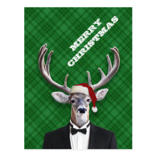 Funny Santa Hat Christmas Deer Green Plaid Postcard