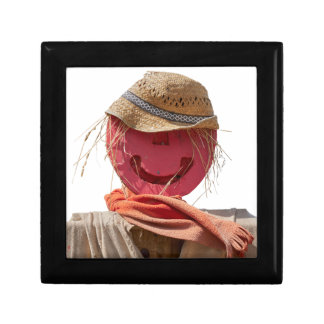 funny scarecrow in the farm gift box