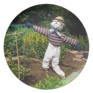Funny scarecrow plate
