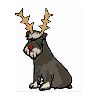 Funny Schnauzer with Reindeer Antlers Christmas Postcard
