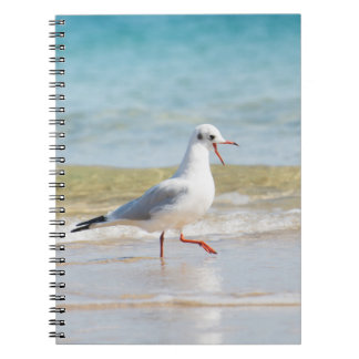 Funny seagull notebook