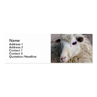 Funny Sheep Business Cards
