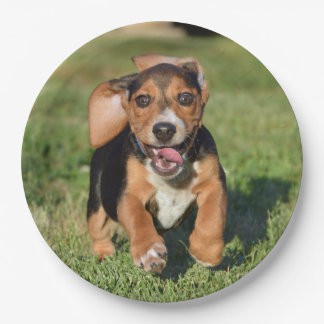 Funny Smiling Beagle Puppy Ears Flapping Paper Plate