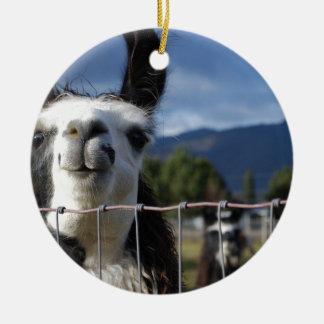 Funny Smiling Llama in Southern Oregon Ceramic Ornament