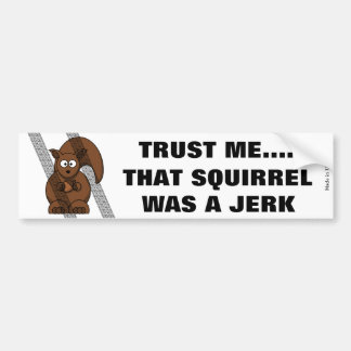 Funny Squirrel Bumper Sticker