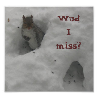 Funny Squirrel Saying Poster