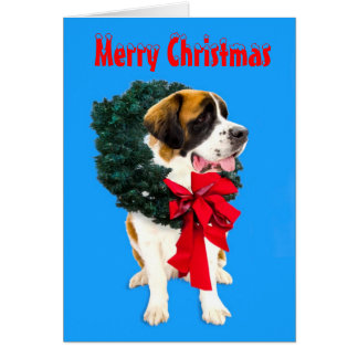 Funny St Bernard dog with Christmas wreath card