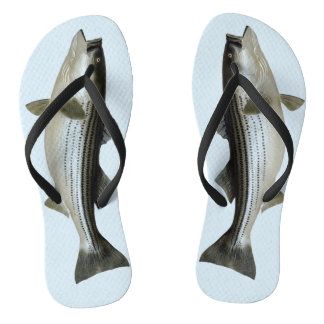 Funny Striped Bass for the Fisher Thongs
