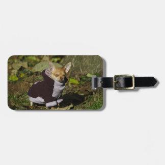 Funny Stylish Dressed Chihuahua Puppy Luggage Tag