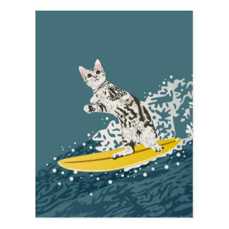 Funny Surfing Cat Postcard