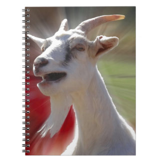 Funny Tallking Goat Photograph Spiral Note Books