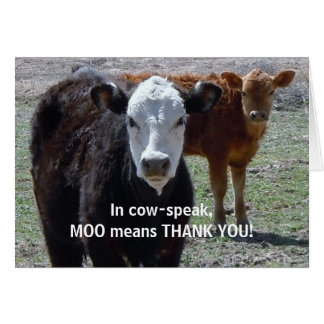 Funny Thank You - Cow Animal Humor - Ranch Greeting Card