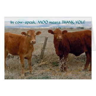 Funny Thank You - Red Cow Animal Humor - Ranch Greeting Card