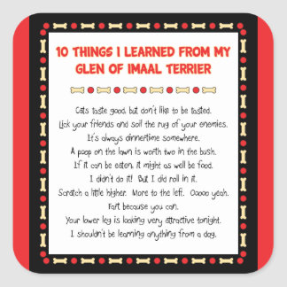 Funny Things I Learned From Glen of Imaal Terrier Square Sticker