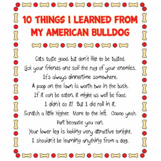 Funny Things I Learned From My American Bulldog Acrylic Cut Outs