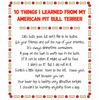 Funny Things I Learned From My American Pit Bull Standing Photo Sculpture