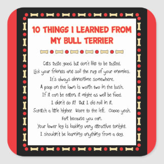 Funny Things I Learned From My Bull Terrier Square Sticker