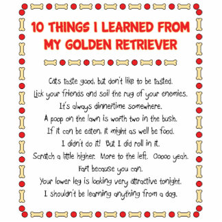Funny Things I Learned From My Golden Retriever Standing Photo Sculpture