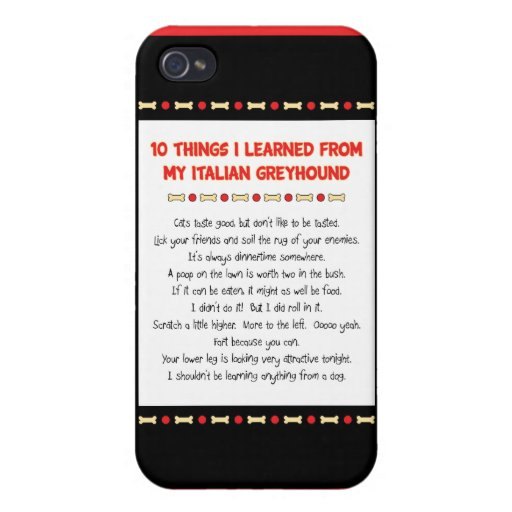 Funny Things I Learned From My Italian Greyhound Cases For iPhone 4