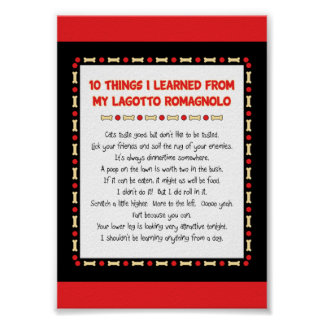 Funny Things I Learned From My Lagotto Romagnolo Poster