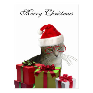 Funny trendy Santa wise cat Christmas Postcard