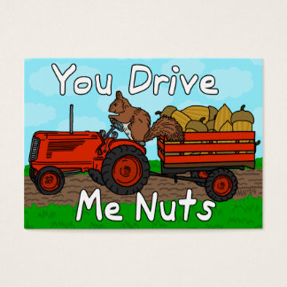 Funny Valentine's Day Squirrel Nuts Pun Kids Class