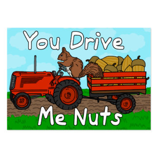 Funny Valentine's Day Squirrel Nuts Pun Kids Class Pack Of Chubby Business Cards