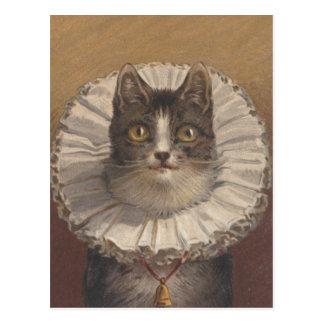 Funny Vintage Edwardian Cat Postcard