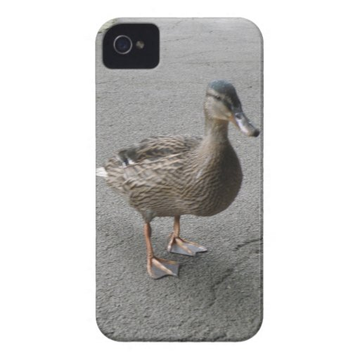 Funny Waddling Duck Blackberry Bold Case Case-Mate iPhone 4 Case