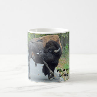 Funny What Are You Looking At? Busy Bull Bison Coffee Mug