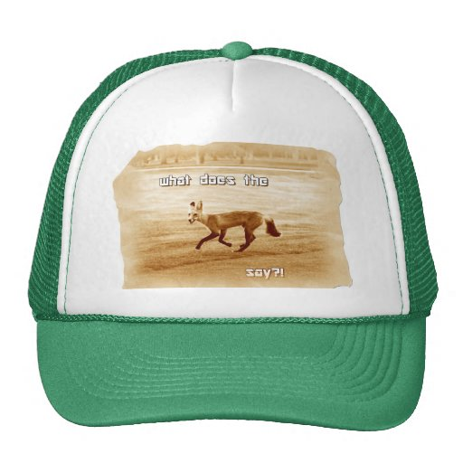 funny what does the fox say trucker hats