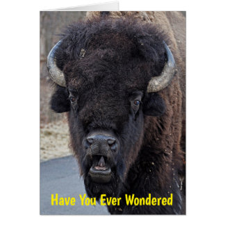 Funny Why Bison Don't Use Tissues! Card