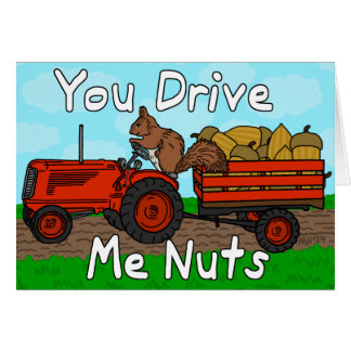 Funny You Drive Me Nuts Squirrel Pun Valentine's Card