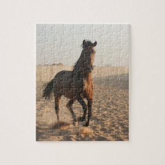Furioso #15 puzzle