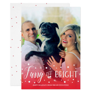 Furry & Bright - Pet Christmas Photo Card