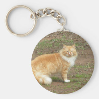Furry Orange and White Cat Basic Round Button Key Ring