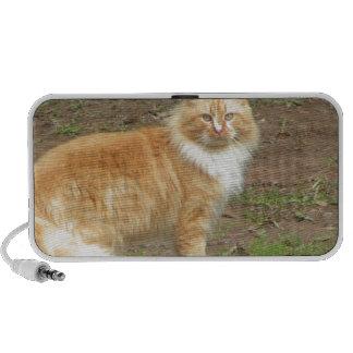 Furry Orange and White Cat Mini Speakers
