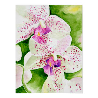 Fuschia Orchid Canvas Print