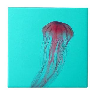 Fuschia Pink Jellyfish on Aqua Blue Green Ceramic Tiles