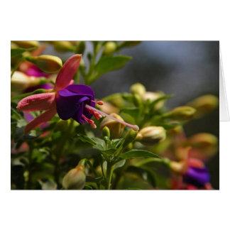 fuschias flower note card