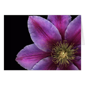 Fuscia Clematis Close-up Card