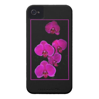 Fuscia Orchids iPhone 4 Covers